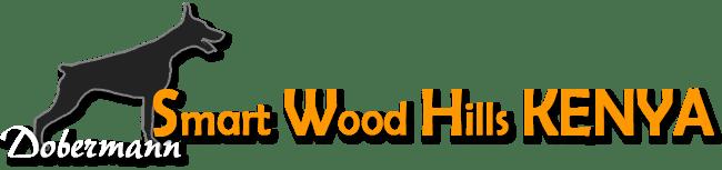 Доберман Смарт Вуд Хиллз Кения / Dobermann Smart Wood Hills Kenya