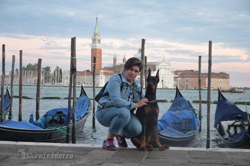 Венеция и доберманы, сентябрь 2016