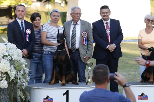 euroclubwinner-final3